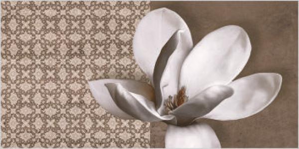 Q-BO Ceramic